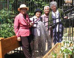 seniors in garden, Philadelphia (courtesy of US EPA)