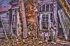 falling in (fat*daddy) Tags: tree brick window glass grass sticks nikon hdr d40