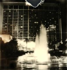 (tobysx70) Tags: las vegas toby slr sign night silver project polaroid sx70 hotel neon uv flamingo nevada palace casino illuminated nv tip strip shade 600 lit fountains hancock blvd caesars floodlit 680 impossible the px silvershade theimpossibleproject px600uv tobyhancock impossaroid