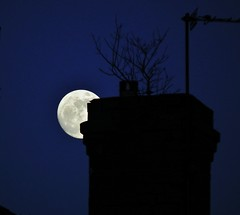 2011-03-18 the moon behind a chimney with a tree in it (daviddobson77) Tags: moon fuji solareclipse tonightsmoon moonwatch hs10 lunartics sacredmoon supermoon 1001nightsmagiccity mygearandme mygearandmepremium mygearandmebronze aboveandbeyondlevel1