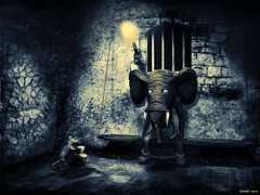 The Prisoner {2016} (kenmojr) Tags: afraid children confinement dungeon elephant fantasy fear illustration jail kenmorris kenmo lonesome monochromatic prison prisoner punishment rat reh robertehoward rodent solitude storybook tower tusk tusks worry