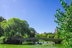 20160925-IMG_5848 (kellyv) Tags: bowbridge canon7d centralpark manhattan newengland newyork newyorkcity tokinaatx1116f28