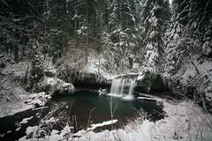 Upper Butte creek falls (Matt Abinante) Tags: winter oregon scottsmill upperbuttecreekfalls