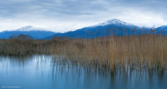Dawn, Prespes, Greece (Christos Andronis) Tags: blue winter lake colour colors season landscape outdoors photography europe colours nopeople greece colorimage beautyinnature prespes colourimage christosandronis