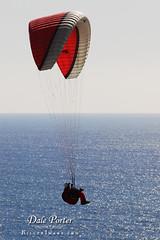 IMG_304_Paraglider_201103
