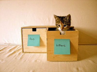 organize_your_cats_11