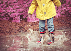 ~89/365~ (DocUNC) Tags: pink flowers boy portrait flower texture wet water rain yellow canon fun puddle drops kid spring jump dof child mud boots bokeh quote coat pad naturallight raindrops 365 splash mudpuddle project365 5dmk2 docunc splashdrops