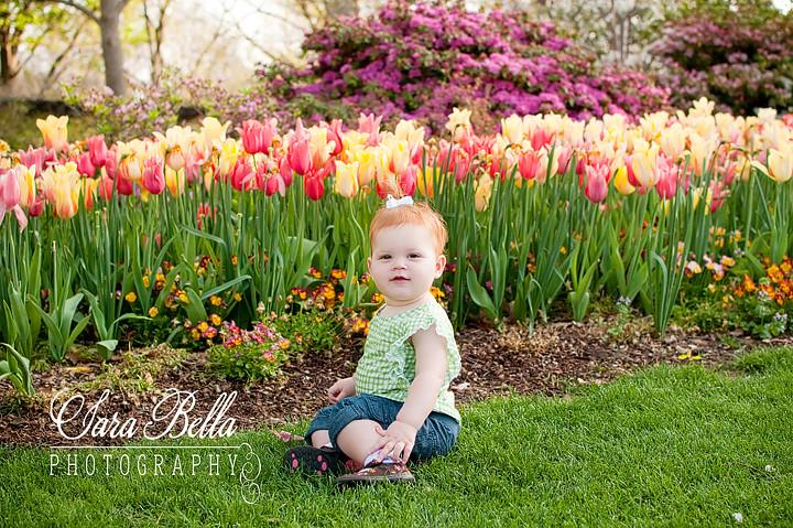 3-19-2011 Zoe Tulips (3) copyweb
