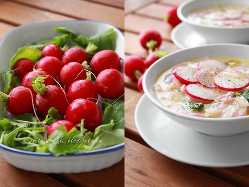 Zuppetta di rapanelli e gorgonzola