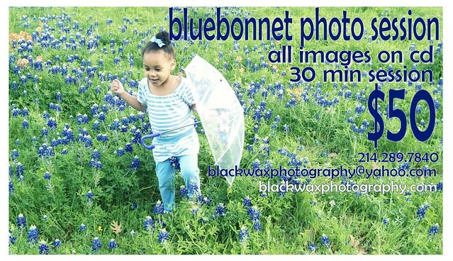 bluebonnet_ad1a
