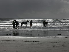 Rossnowlagh at dusk. (eddieELM) Tags: ireland light sea summer sky horses blackandwhite bw irish black beach water rain fun bay coast sand surf waves naturallight ponies donegal rossnowlagh ulster irishlight