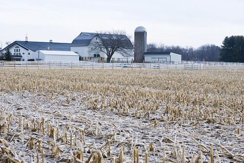 Frost and Farm