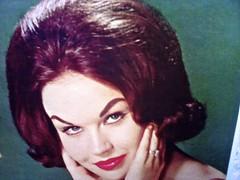 Ozone Hole Culprit (Wires In The Walls) Tags: bighair bouffant hairspray albumart recordsleeve crazyeyebrows
