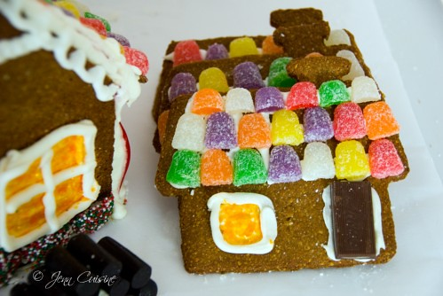 PAG2553gingerbread-499x334
