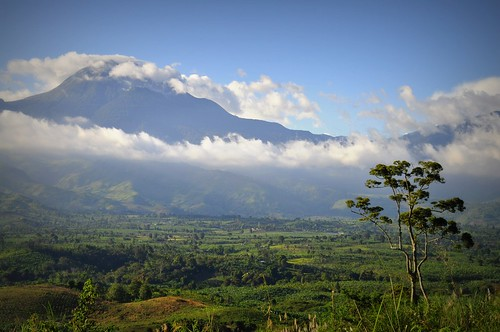 view of Mt. Apo from Camp Sabros