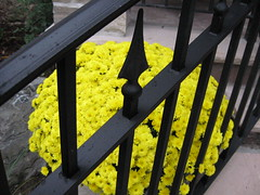 Beautiful Railing (LandscapeGates) Tags: iron railing wrought