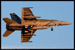 Pukin' CAG (jderden77) Tags: dogs airplane fighter aircraft aviation military united navy super landing april strike hornet states boeing arrival f18 approach naval usnavy usn oceana fa18 2011 pukin kntu vfa147