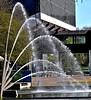 Erfrischungen (GelsenBuer) Tags: park water fountain waterdrops botanicalgarden freizeit wassertropfen botanischergarten fontäne grugapark gruga waser freizeitanlage grugaparkessen waterjetwaterjetwasserstrahlfreizeitparkerholungsparknrwgermanydeutschland