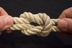 beautiful, but deadly square knot