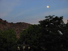 The Twilight Moon (Rahul Chhiber) Tags: blue trees sky moon mountains evening streetlights scenic hills backdrop ornate canonpowershot samode lamplights