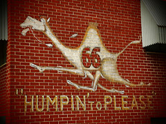 HUMPIN' to PLEASE (FotoEdge) Tags: usa brick classic sign race ancient hand symbol please painted memories olympus racing norton 66 mascot kansascity route camel american memory worn bottoms weathered express lettering fading trans speedy campbell campbells camels awnings trucking 43 humping e5 shadowed paintedsign eastbottoms fourthirds humpin humpintoplease snortin snortinnorton fotoedge bobtravaglione olympuse5 mragan