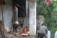 Destilando 1
