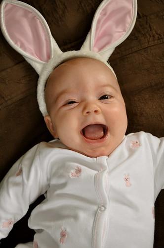 EBD Bunny