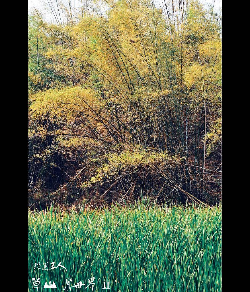 ++草山.月世界Ⅱ++
