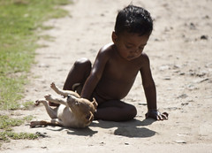Lets Play (Sandeep Santra) Tags: road boy dog playing canon geotagged photography interesting flickr play favourites flickraward eos500d