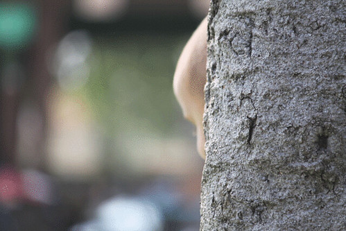 cute-guy-peekaboo-tree-(9)
