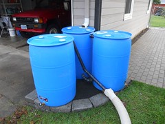rain barrels connected