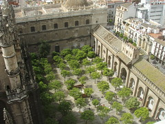 View of the Patio de los Naranjos inside the Cathedral of Sevilla (a3rynsun) Tags: sevilla spain view seville belltower oranges lagiralda watersystem patiodelosnaranjos