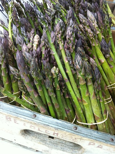 black rock orchard asparagus