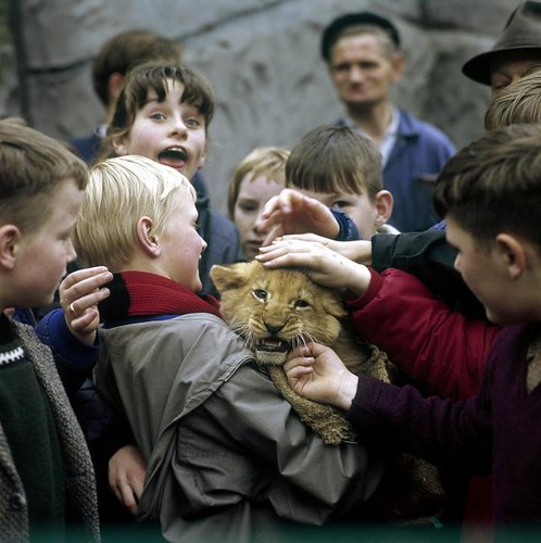 Kinderen met welp / Children holding whelp