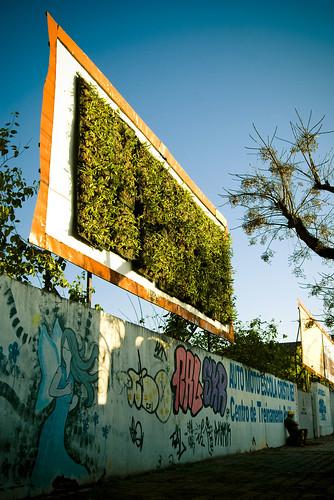 Natureza Urbana #1