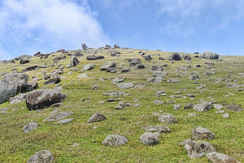 Hill covered in boulders.