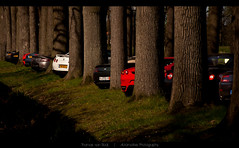 Supercar Forest (Thomas van Rooij) Tags: california lighting charity trees castle cars car forest photography nikon nissan martin thomas automotive run ferrari event exotic nikkor rit supercar v8 maserati aston vantage exotics f430 supercars lineup dbs kasteel roadster gtr 18105 heeswijk rond dinther evenement 2011 d90 3200gt rivieren heeswijkdinther rooij thomasvanrooij ritrondderivieren