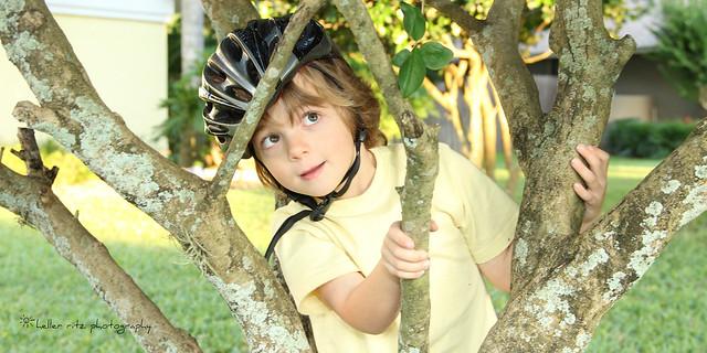 Tree Climber_Tagged