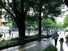 iPhone_Yokohama_20110522_11.jpg (Jun Takeuchi) Tags: apple japan yokohama kanagawa  digitalphotography iphone  iphone4