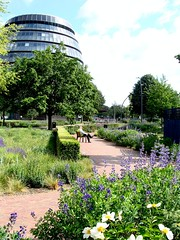 Piet Oudolf planting, Potters Fields, London (casiopoke) Tags: london towerbridge cityhall morelondon pietoudolf landscapedesign pottersfields