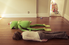 180 of 365 (dailyweekley) Tags: kermitthefrog facedown playgroupwithallmyoldcoworkers