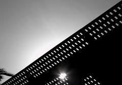 """Black Roof (Frank """"cisd"""" - Visiting the Past) Tags: color saint photoshop canon frank rebel software maroc marrakech pro majorelle nik yves maison toit hdr jardins laurent toiture filtre 550d cs5 efex photoengine olono"""