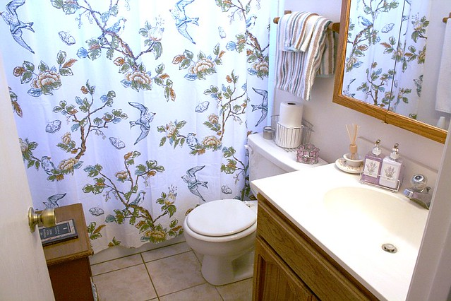 House Tour Update 6/5 Guest Bath
