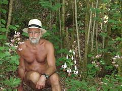 Older naturist pics