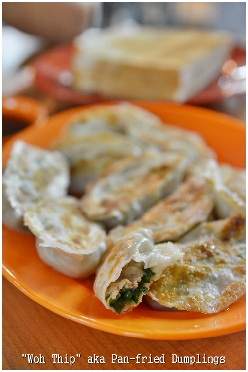 Chinese Style Fried Dumplings