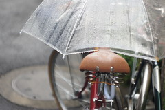 (noji-ichi) Tags: leica rain bike japan umbrella shower tokyo bokeh sony droplet      summarit  leitz nex3