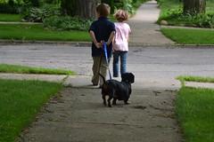 自分から犬の散歩をする子供たち