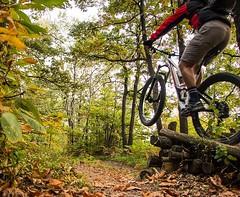 Let's fly ..Mtb jump (Fabrizio Malisan Photography @fabulouSport) Tags: bosco wood natura bikin biker rider ride cycling enduro trails trail woods jumping fun riding biking mountainbike mountain jump bicicleta bici bike velo vtt mtb