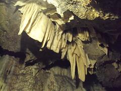 DSC02309 (gli uccelli non cantano di notte) Tags: grotte caverne stalattiti stalagmiti grottedelvento