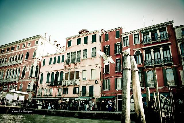 威尼斯  岸邊光景